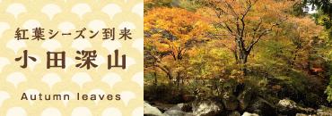 真っ赤に染まる紅葉の秋_小田深山渓谷