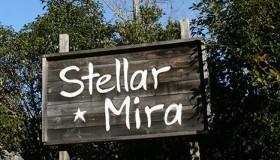 ペンション stellar mira