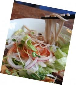 夏の新メニュー 「もちむぎサラダうどん」を召し上がれ!
