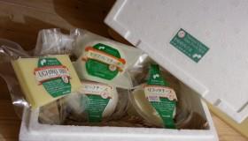 チーズ工房 醍醐