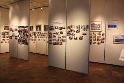 ビジターセンター2階展示のご案内「アラスカの軌跡と奇跡」