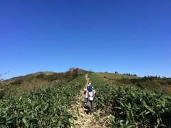 秋の小田深山散策(笠取山)のご案内