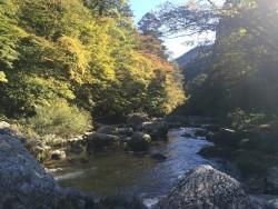 小田深山の紅葉 【見頃は10月24日からの予想】