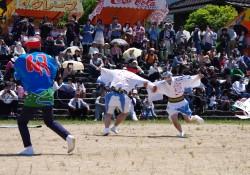5月5日 いかざき大凧合戦