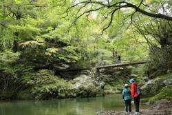 第6回「春の小田深山ウォーク」を開催します