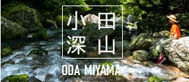 【公式】小田深山